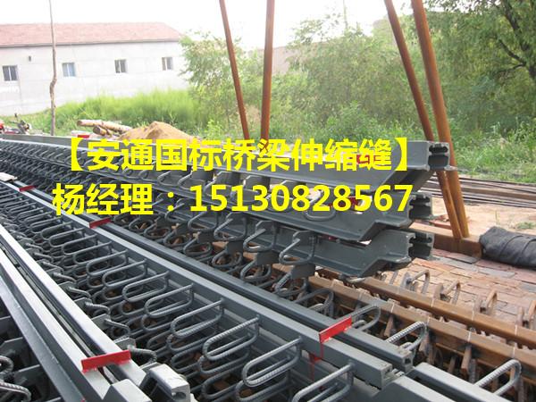 各种规格型号桥梁伸缩缝装置 国标模数式伸缩缝厂家2